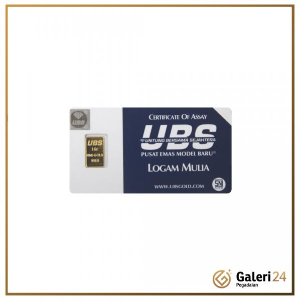 Web UBS 1gr