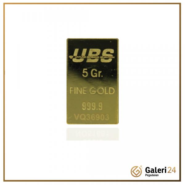 Web UBS 5gr